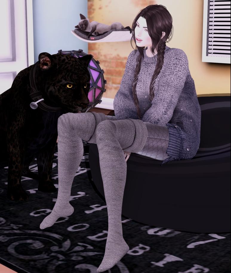 Crazy Cat Lady_006